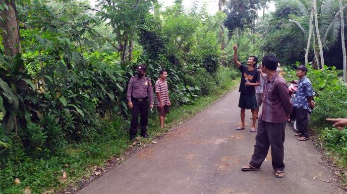 Innalillahi, Supandi Meninggal Saat Petik Kelapa, Warga Desa Pasunggingan Purbalingga Ini Terjatuh