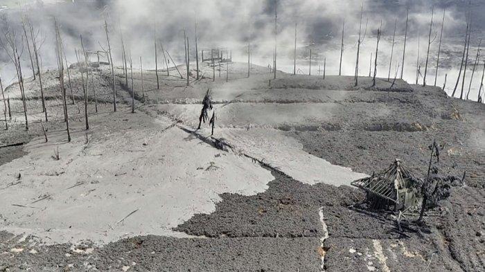 Cerita Petani Kentang di Batur Banjarnegara, Gagal Raup Keuntungan Akibat Erupsi Kawah Sileri