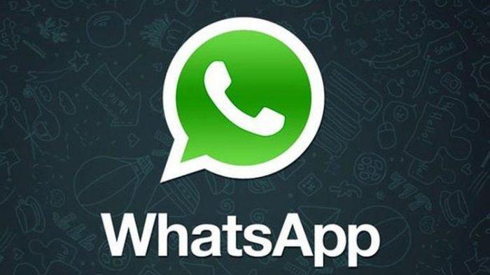 Cari File Kiriman Makin Mudah dan Cepat di WhatsApp, Begini Caranya