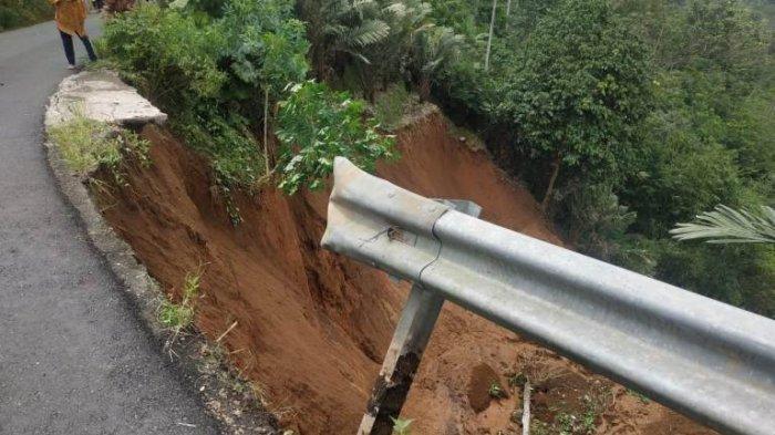 Herman Kaget Saksikan Kebun Salak di Watumalang Wonosobo Terus Bergerak, Bermula dari Gemuruh