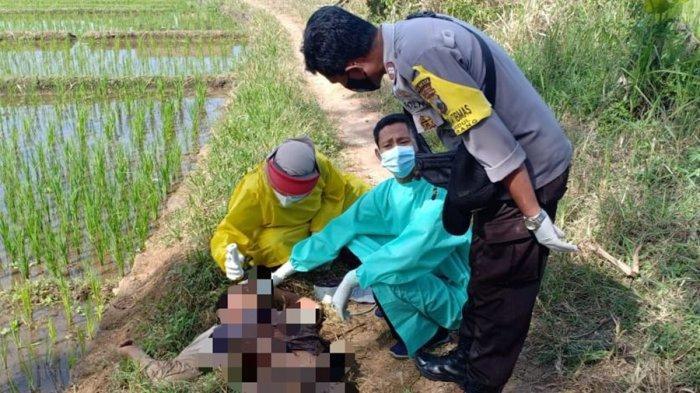 Mayat laki-laki yang ditemukan di sawah komplek Jalan Lingkar Ajibarang, Desa Ajibarang Wetan RT 01 RW 01, Kecamatan Ajibarang, Kabupaten Banyumas, pada Rabu (28/4/2021).