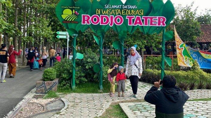 Rodjo Tater Pangkah Tegal Mulai Dibuka untuk Wisatawan, Sekali Masuk Dibatasi 500 Pengunjung