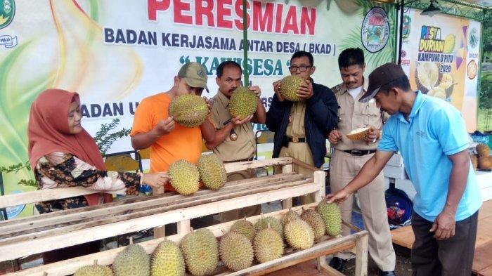 Ada Pasar Durian Lokal di Pinggir Jalan Nasional Sigaluh Banjarnegara, Buka Selama Musim Durian Lho