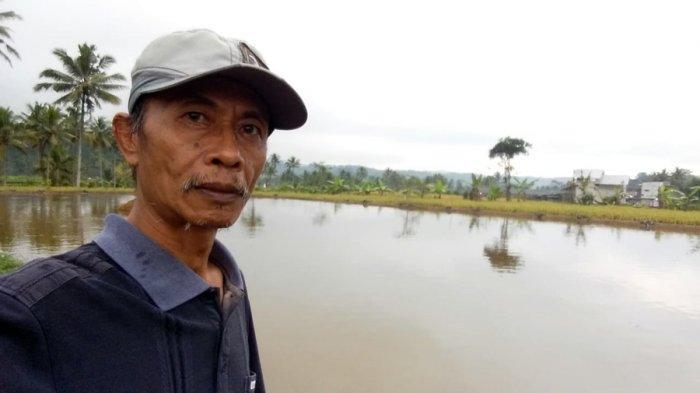 Cerita Heri Mendulang Untung di Masa Pandemi, Tangkap Peluang Budidaya Nila di Wulungsari Wonosobo