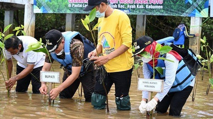 Polres dan Pemkab Kebumen Tanam Mangrove di Pantai Logending, Upaya Mageri Segoro Tak Masuk Daratan