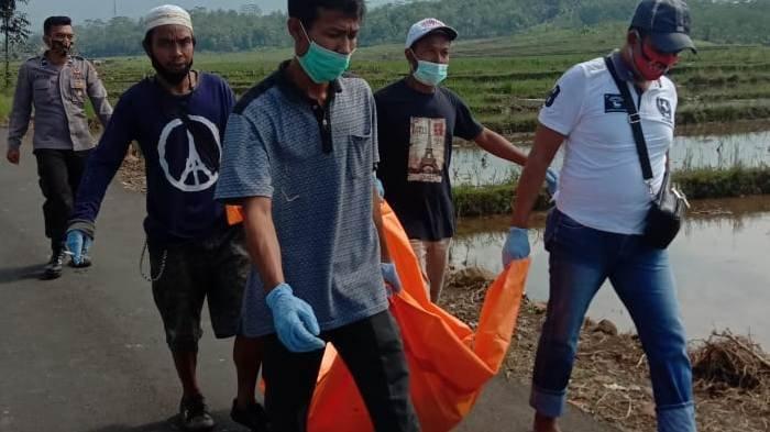 Mayat Perempuan Ditemukan di Gubuk Sawah di Rembang Purbalingga: Berambut Ikal, Pakai Daster Biru