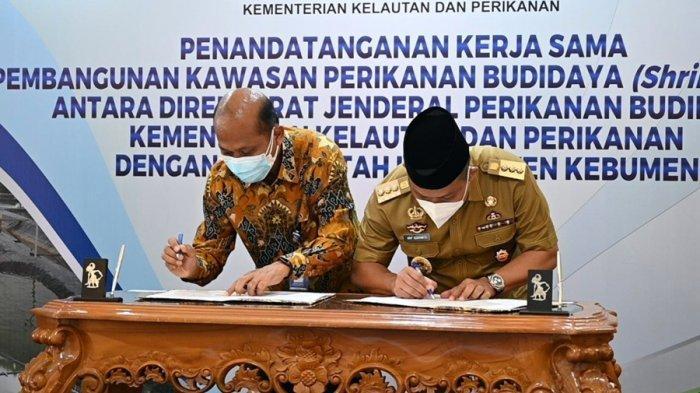 Jadi Pertama di Indonesia, Industri Perikanan Berbasis Shrimp Estate Dibangun di Kebumen