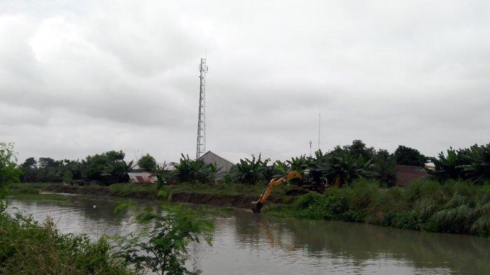 Antisipasi Banjir di Kendal, Eceng Gondok Kali Buntu Dikeruk, Kerahkan Satu Ekskavator