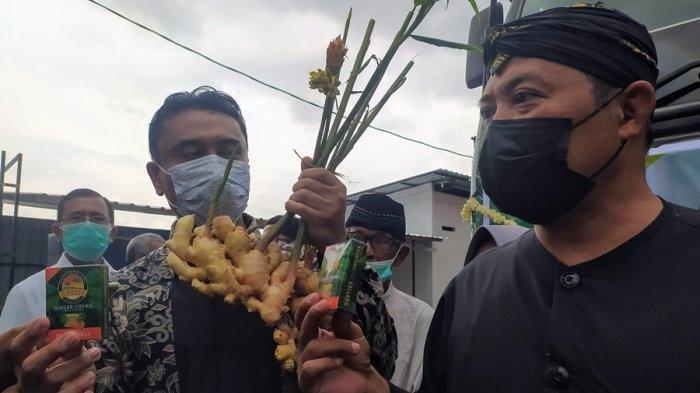 Dua Juta Permen Jahe Meluncur ke Negeri Paman Sam, Produk Lokal Karanganyar Mulai Diekspor