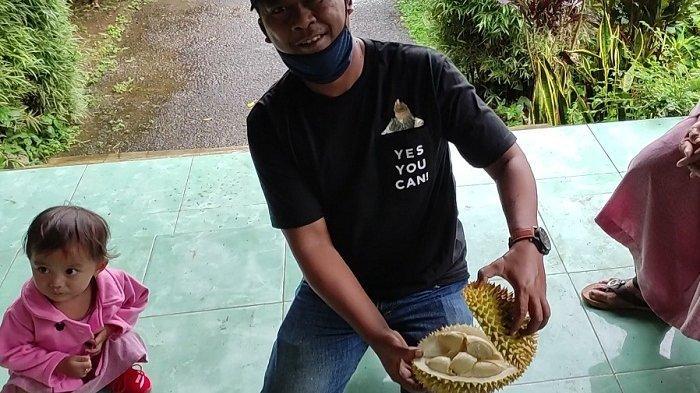 Dihajar Cuaca Ekstrem, Panen Durian Sigaluh Banjarnegara Tak Memuaskan. Pesta Durian Batal Digelar
