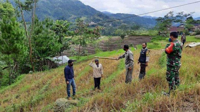 Petani di Kandangserang Pekalongan Tewas Kesetrum, Diduga Jerami yang Disunggi Sentuh Kabel Listrik