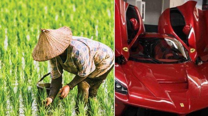 Petani di Sulawesi Miliki Aset Hingga Rp 16 Miliar, Bisnis Sampingannya Bebahaya