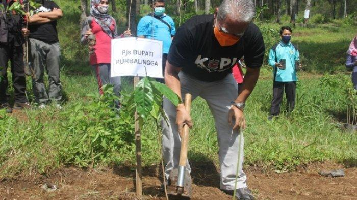 Serahkan 5425 Pohon Kopi ke Warga, Pemkab Purbalingga Ingin 3,5 Tahun Lagi Banyak Kedai Kopi
