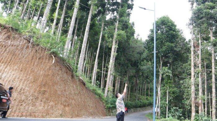 Tak Lagi Gelap, Jalan Wanasari Argasoka-Kepetek Banjarnegara Kini Diterangi Lampu Bertenaga Surya