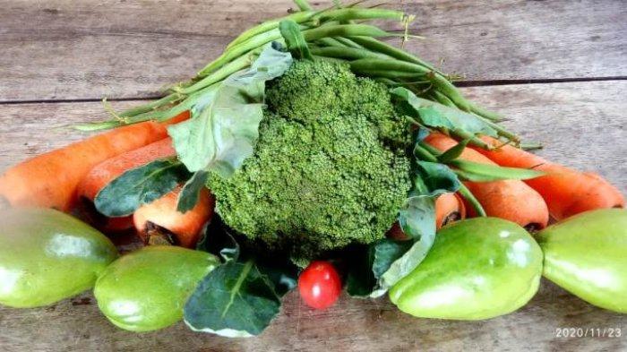 Berikut Manfaat Buah dan Sayur Berdasarkan Warna: Perlu Rotasi untuk Penuhi Nutrisi Tubuh