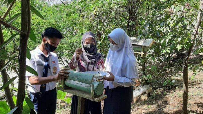 Kreatif, Guru SMP Negeri 2 Karangpucung Cilacap Manfaatkan Lebah untuk Jelaskan Matematika