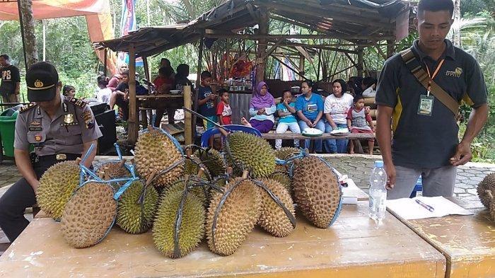 Sensasi Makan Durian di Curug Pitu Sigaluh Banjarnegara, Ada Durian Simimang yang Lagi Digandrungi