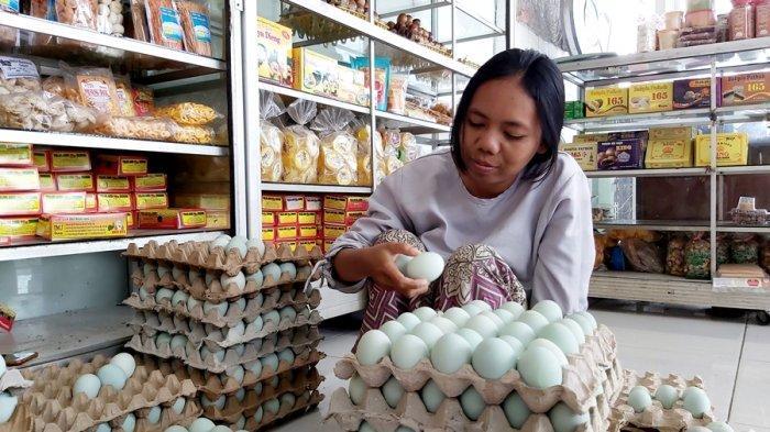 Lisna Teringat Larangan Mudik 2020, Banyak Telur Dibuang Karena Membusuk, Toko Gulung Tikar di Tegal