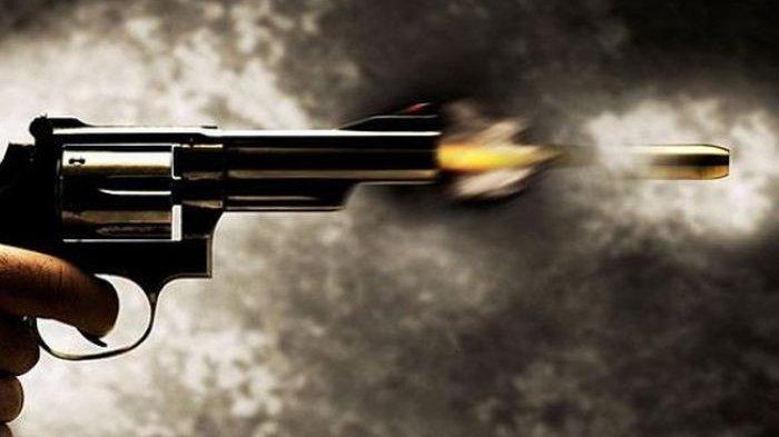 Todongkan Pistol dan Coba Perkosa Ibu Kandung, RT Ditembak Polisi, Kapolres: Dia Melawan