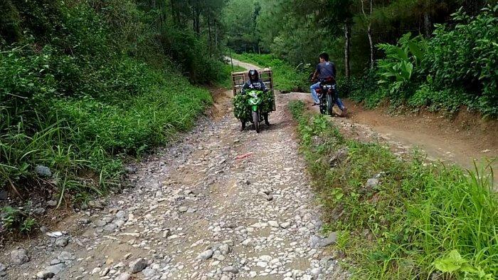 Pengendara Pilih Putar Balik Begitu Memasuki Jalan di Giritirto Kebumen, Yatno Ungkap Kesaksiannya