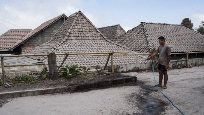 Hujan Abu Merapi Meluas ke Boyolali, Warga Tunda Panen Daun Tembakau
