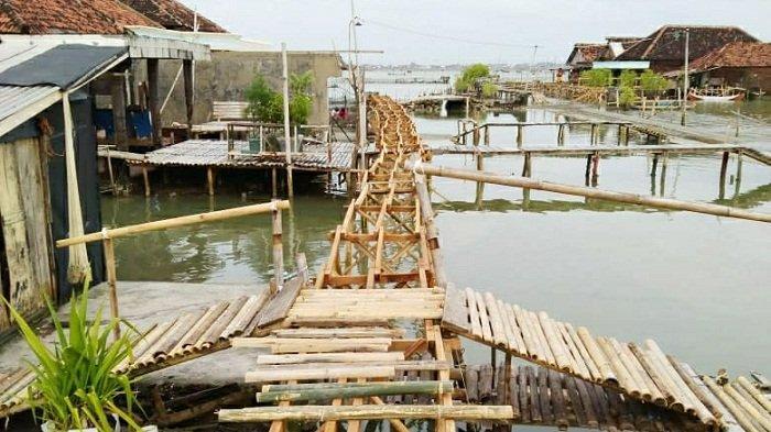 Butuh Bantuan, Warga Timbulsloko Demak Kehabisan Dana Buat Bangun Jalan Kampung di Tengah Rob