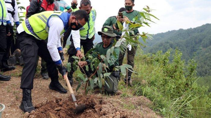 Bukit Sipako Disiapkan Jadi Destinasi Wisata Agro di Kebumen, Ditanam Berbagai Tanaman Buah