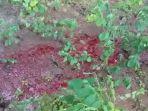 air-berwarna-merah-pekat-keluar-dari-lahan-kosong-milik-waluyo-warga-sukoharjo.jpg