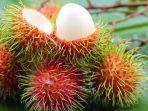 inilah-10-manfaat-buah-rambutan-bagi-kesehatan.jpg