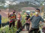 komcil-smpn-2-cimanggu-cilacap-menanam-stroberi-dan-tanaman-apotek-hidup-minggu-2282021.jpg
