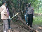 polisi-melakukan-olah-tkp-di-lokasi-parsiman-tertimpa-pohon-hingga-tewas.jpg