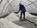 proses-produksi-garam-di-kampung-garam-di-desa-tlogopragoto-kecamatan-mirit-kebumen.jpg