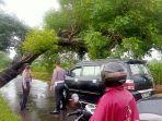 sebuah-pohon-miring-ke-arah-jalan-tepatnya-di-jalan-desa-tanjungrejo-honggosoco-jekulo.jpg