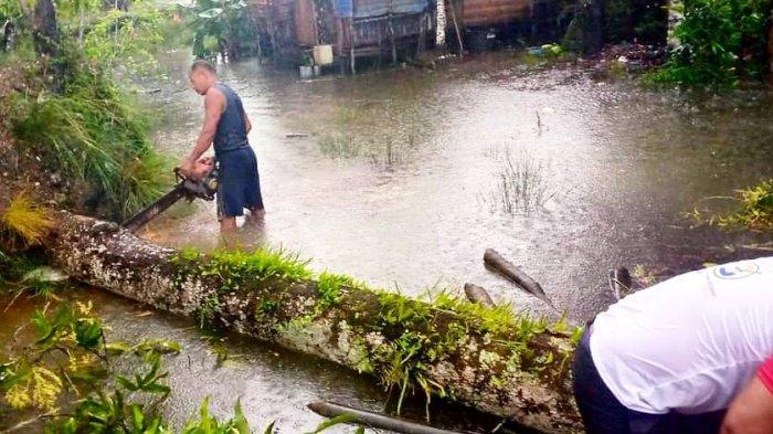 Warga gotong royong membersihkan pohon tumbang di Desa Duara Lingga, Jumat (1/1/2021)