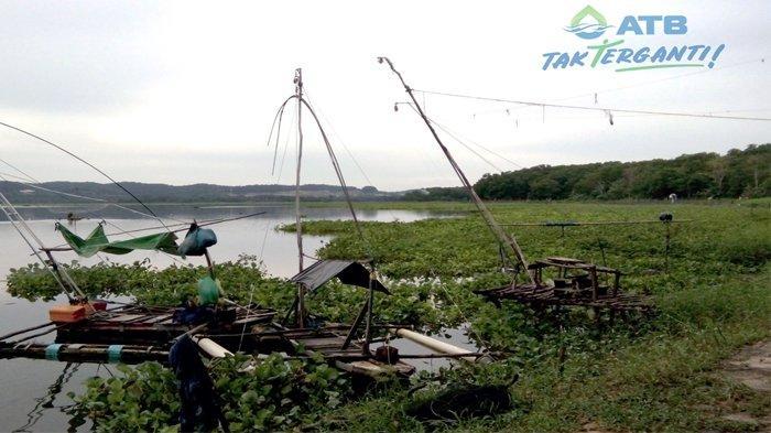 Melihat dari Dekat Wajah Waduk Duriangkang Batam, Fungsi Ekologis Terancam Eksploitasi Hutan