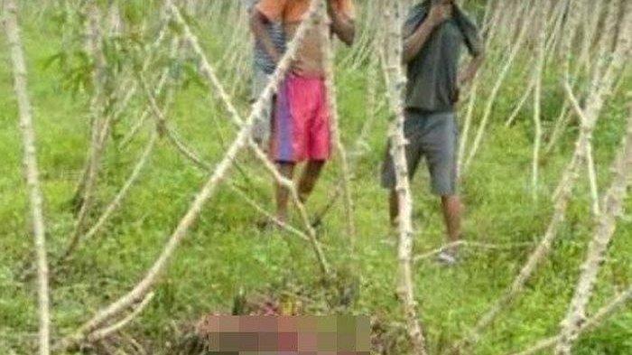Bocah 14 Tahun Ditemukan Tewas, Jasadnya Terurai di Kebun Singkong, Ponselnya Sempat Mati