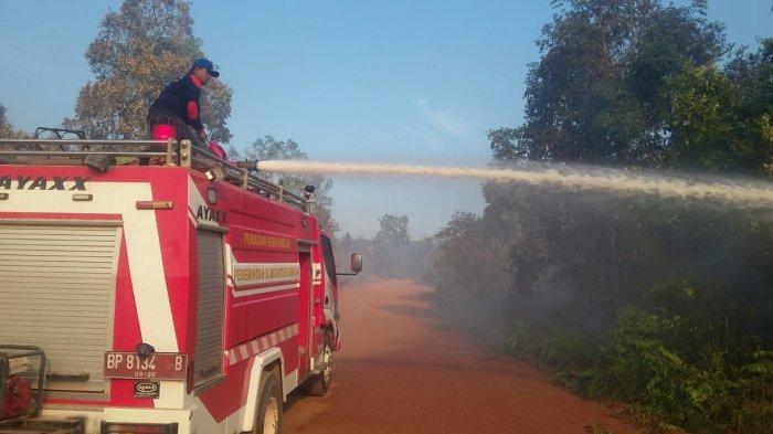 Empat Bulan Sudah 60 Kali Kebakaran Hutan dan Lahan di Bintan, Kapolres Ingatkan Sanksi Bagi Pelaku