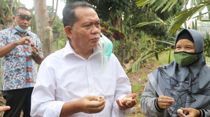 PJS BUPATI BINTAN -Pjs Bupati Bintan Buralimar meninjau langsung Kantor Dinas Ketahanan Pangan dan Pertanian Kabupaten Bintan, Kamis (1/10/2020)