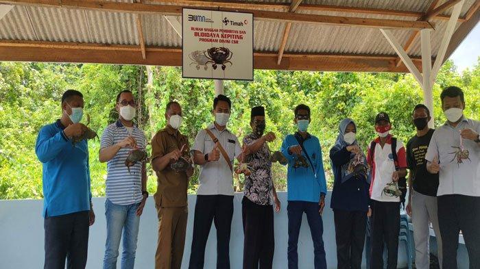 Kelompok Budidaya Ikan Kundur Bersama PT Timah Tbk Panen Kepiting Puluhan Kilo