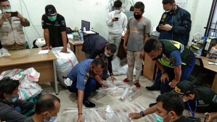 Penyelundupan Baby Lobster via Batam, Benur Dilepas ke Perairan Pulau Abang Galang