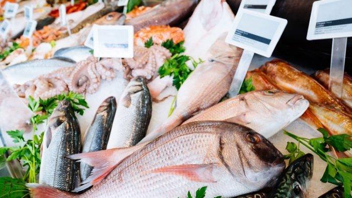 Ditangkap Atau Dibudidayakan, Kenali Yuk Apa Itu Sustainable Seafood dan Sejarahnya