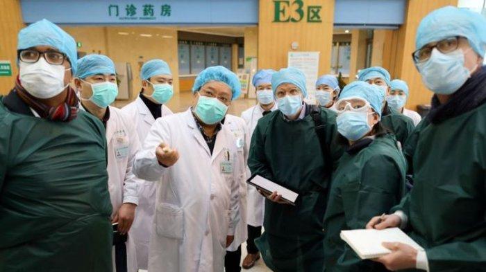 Setahun Virus Corona, Dari Mana Covid-19 Berasal, Terkait China, Peneliti WHO Bongkar Investigasinya