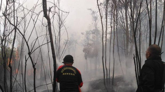 Kebakaran Hutan di Bintan Terjadi Lagi, Kapolres Bintan AKBP Boy Herlambang Ancam Pelaku