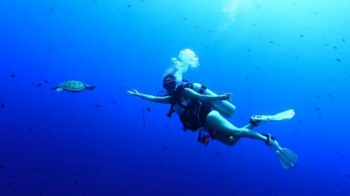 Video Gisel Menyelam di Bawah Laut Bikin Warganet Salfok: Berani Banget!