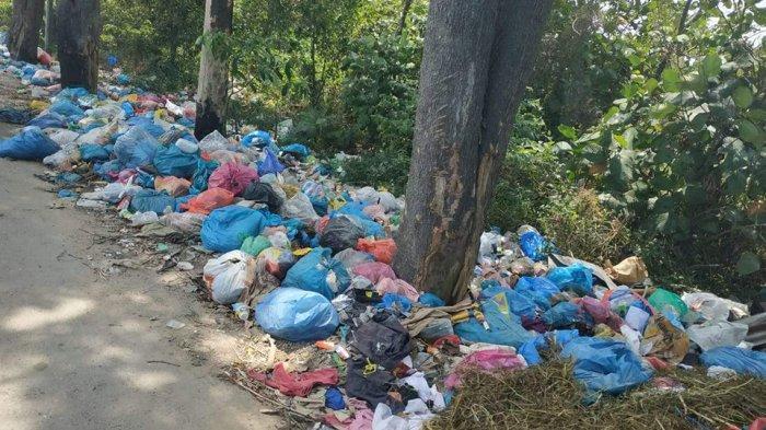 Sampah Berserak di Tepi Jalan, Camat Sagulung Batam Ajukan Tambah Bin Kontainer dan TPS Baru