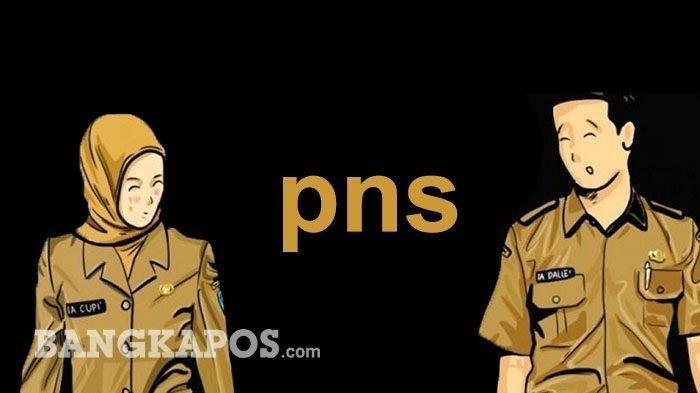 Ilustrasi PNS