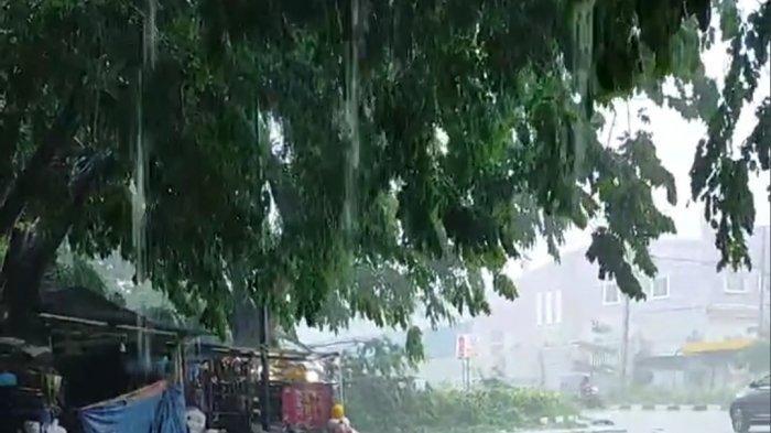 Dikira Ada Kecelakaan, Ternyata Pohon Tumbang, Dampak Hujan Deras & Angin Kencang di Batam