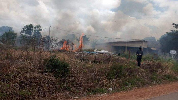 Dua Unit Mobil Pemadam Kebakaran Diturunkan Padamkan Api, Kebakaran Lahan di Tanjungpinang