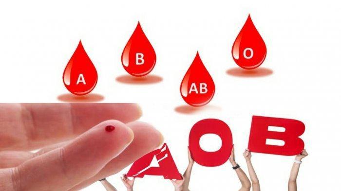 PENASARAN? Ini Golongan Darah yang Paling Disukai Nyamuk Berdasarkan Penelitian