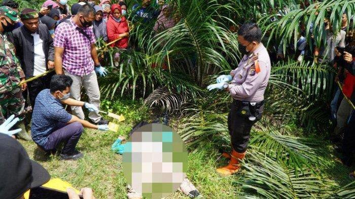 Isdianto Tebo Tega Bunuh Janda di Kebun Karet dan Tinggalkan Jasadnya di Semak